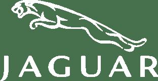 Car brand jaguar Logo